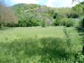 Almenno San Bartolomeo vendiamo porzione di terreno agricolo pianeggiante di mq 3.215 circa pari a circa 4,71 pertiche bergamasche in Vendita